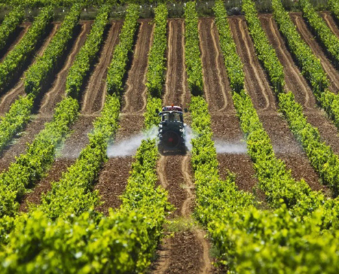 eficiencia energetica Sector-agroalimentario